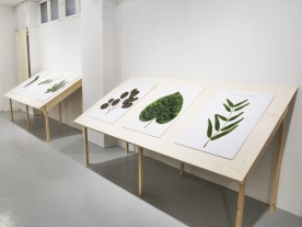 Les Polymères, Valère Costes, Série photographique, 6/10, 60 x 90 cm, 2008